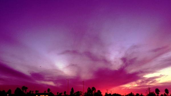 purple by VanessaFrese