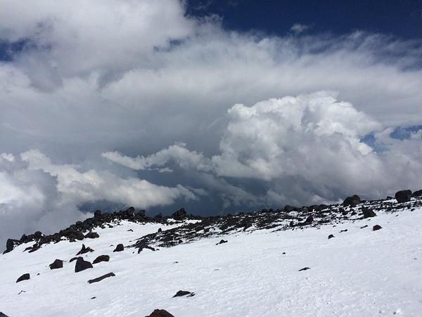 298 by Elbrus9