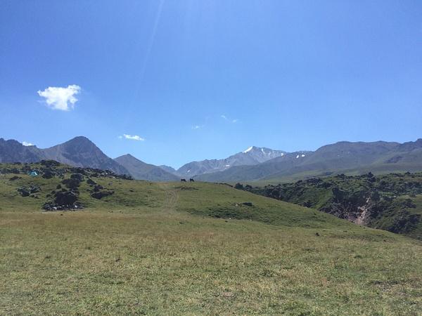 337 by Elbrus9