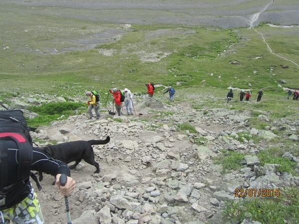 IMG_2462 by Elbrus9