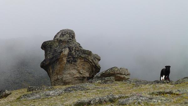 P1080093 by Elbrus9