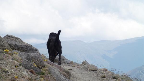 P1080341 by Elbrus9