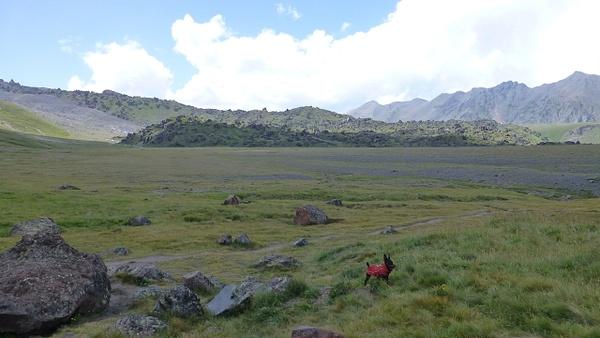 P1080387 by Elbrus9