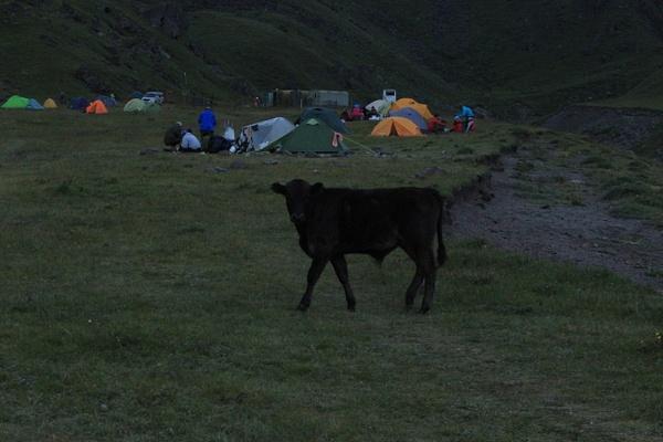 IMG_6974 by Elbrus9
