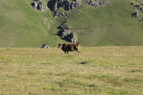 IMG_7036 by Elbrus9