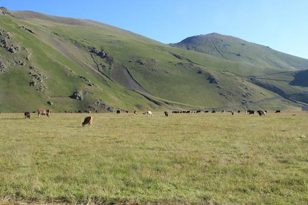 IMG_7043 by Elbrus9
