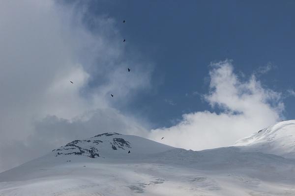 IMG_7227 by Elbrus9