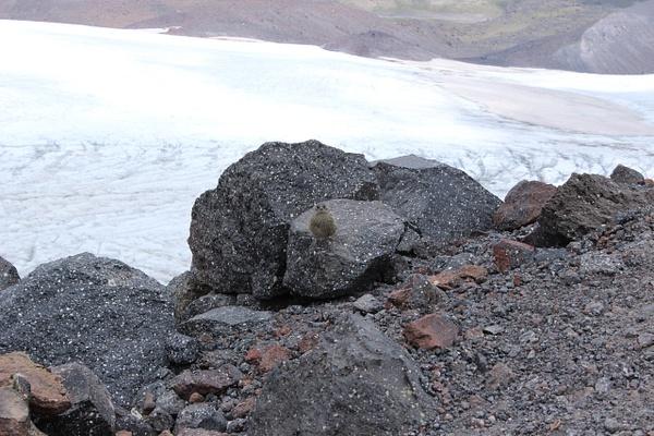 IMG_7235 by Elbrus9