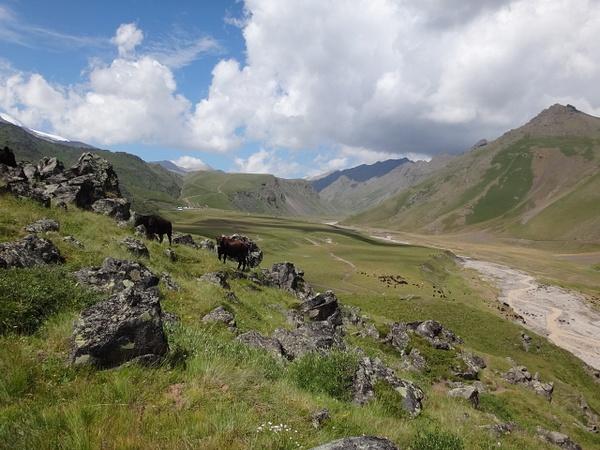 DSC00443 by Elbrus9