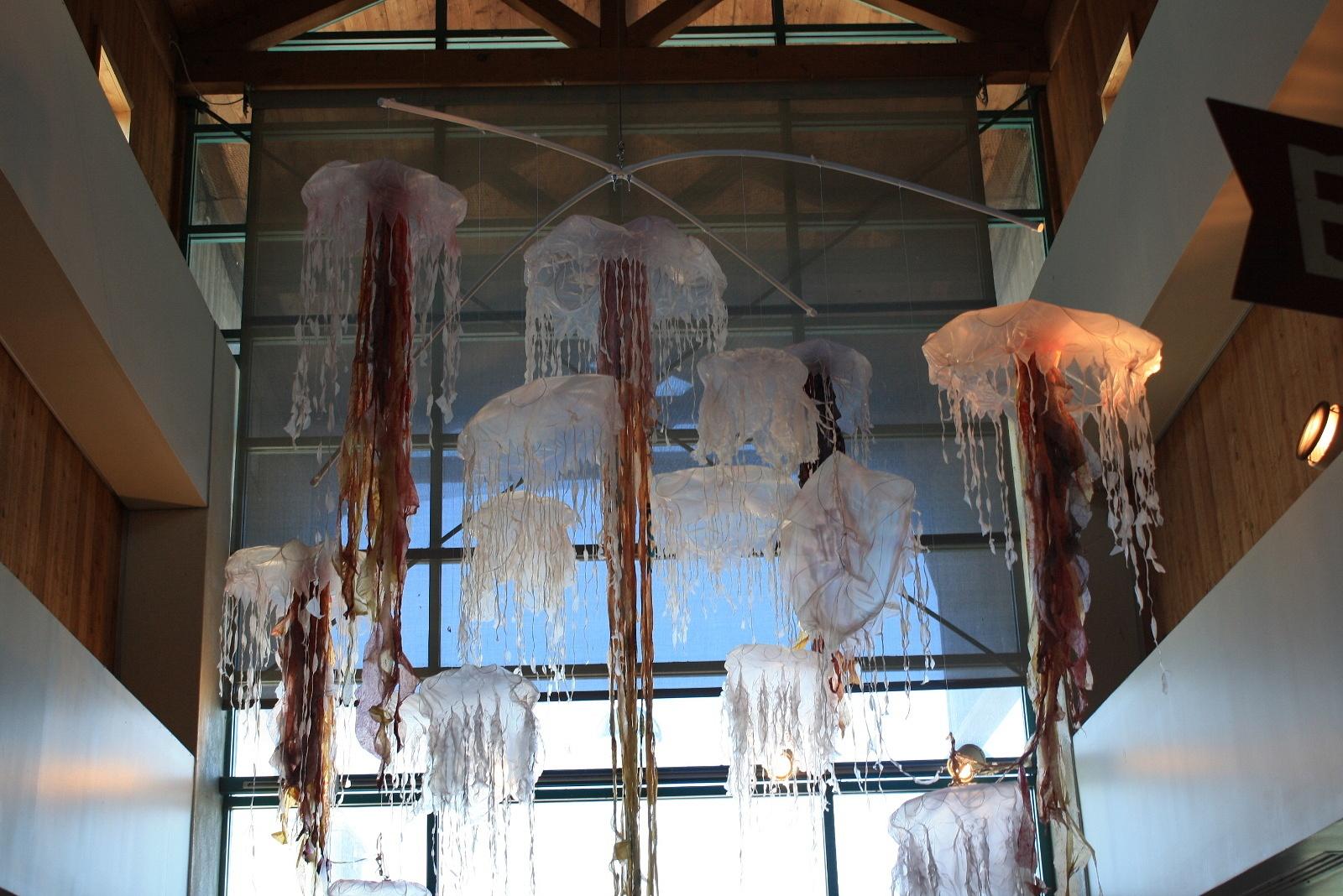 MelissaLizarraga's Gallery