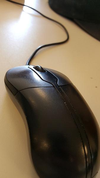 mouse by JosephMartinez