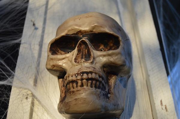 skull by JosephMartinez
