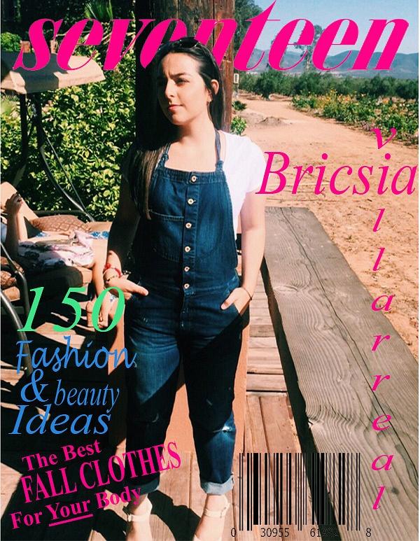 bricsia-2