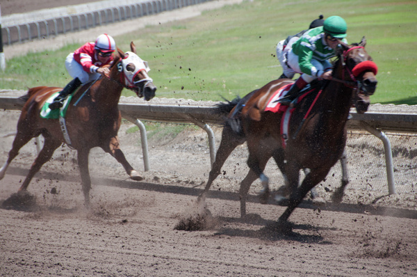 Horse Racing by FredHom