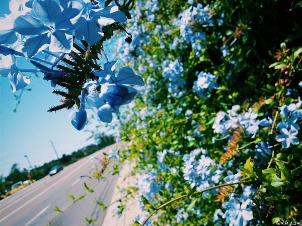 2015-06-07_10.01.52_1 by EstebanAguilar