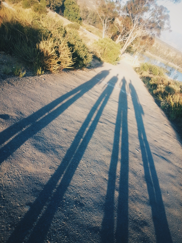 Savage Dam hill Shadows