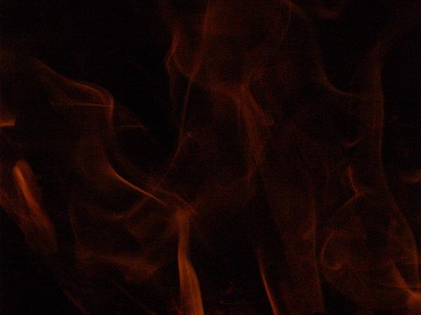 Flamebouyant by EstebanAguilar