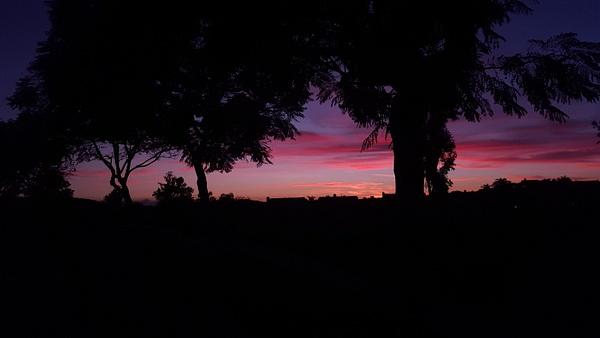 Pink Sunset by EstebanAguilar