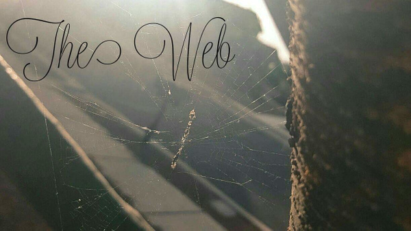 the web by EstebanAguilar