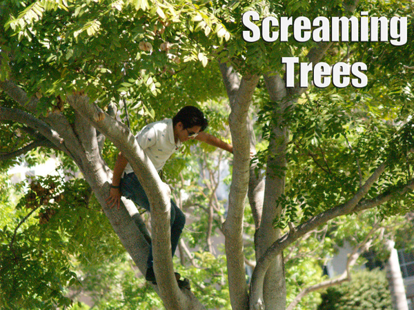 screaming trees by EstebanAguilar
