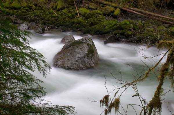 Nooksack River, Mount Baker National Forest