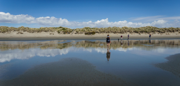 Waimari beach 2 by SandyBrinsdon