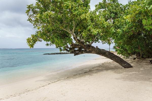 Huahine beach by SandyBrinsdon