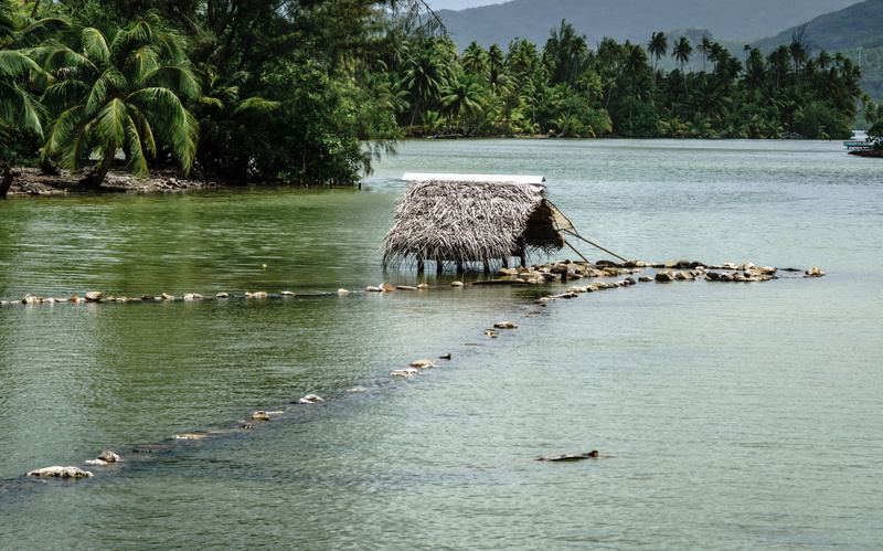 Fish trap Huahine