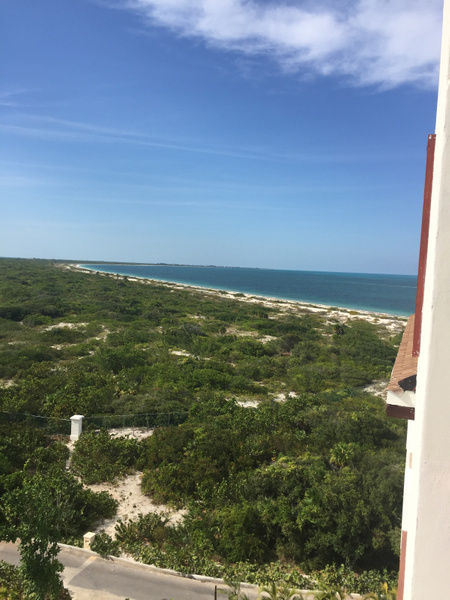 View up the beach from building 3 by JanieBac