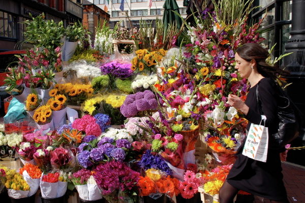 Irish Flower Market