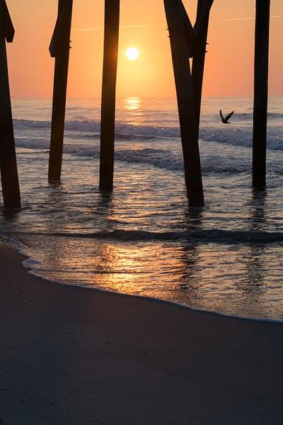 Myrtle Beach/ Huntington SC by Elaine Everly