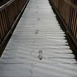 160308_nochmal_Winter
