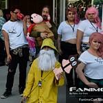 FanimeCon Sunday 1pm - 2pm