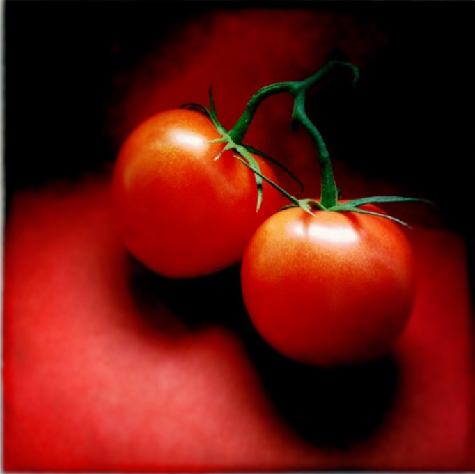 sun kisses red blushed tomatoes