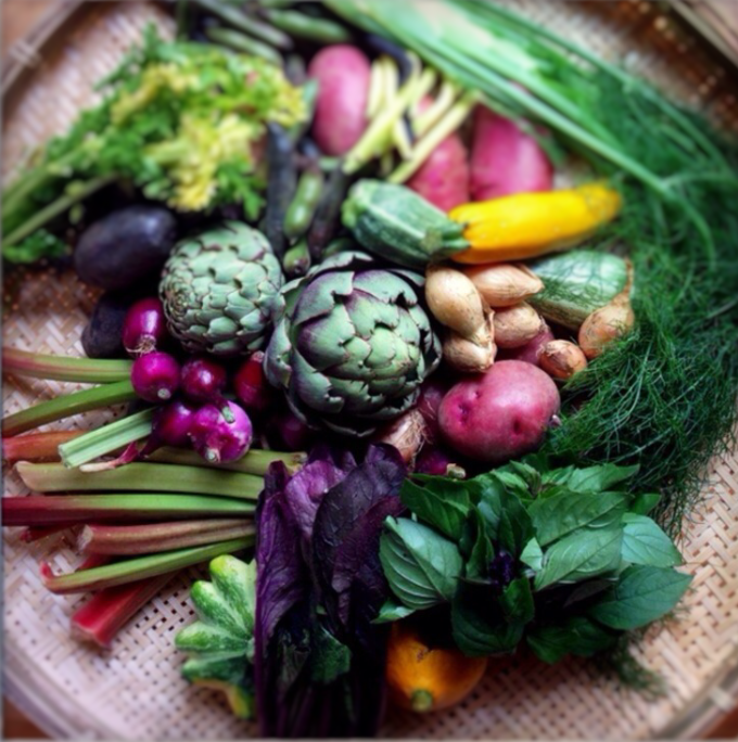 still life of garden vegetables