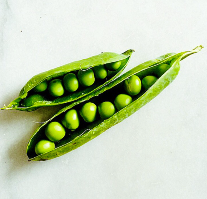 peas in a pot