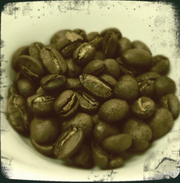 coffee beans ethiopia by Gabriel le Roux
