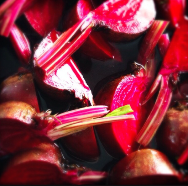 pickled beetroot by Gabriel le Roux
