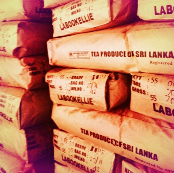 sri lanka tea factory by Gabriel le Roux