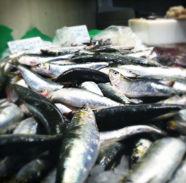 spanish fish market by Gabriel le Roux