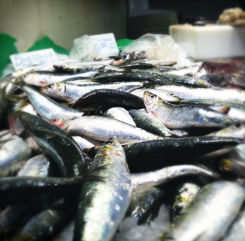 spanish fish market