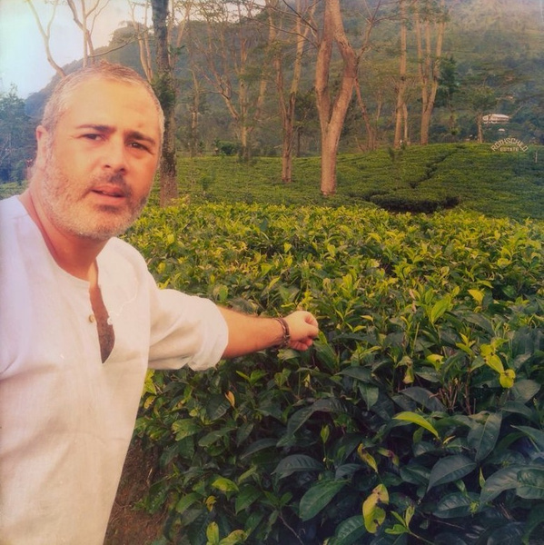 sri lanka tea plantation by Gabriel le Roux