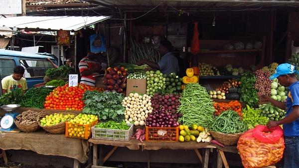 sri lankan vegetables by Gabriel le Roux