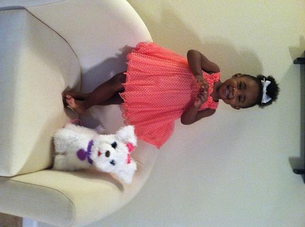 pink dress and doggie by FatimaOleabhiele-alexander