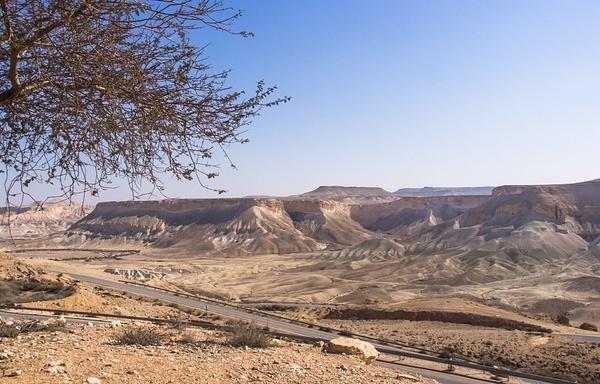 Negev_jeladim_004 by Rimonel3