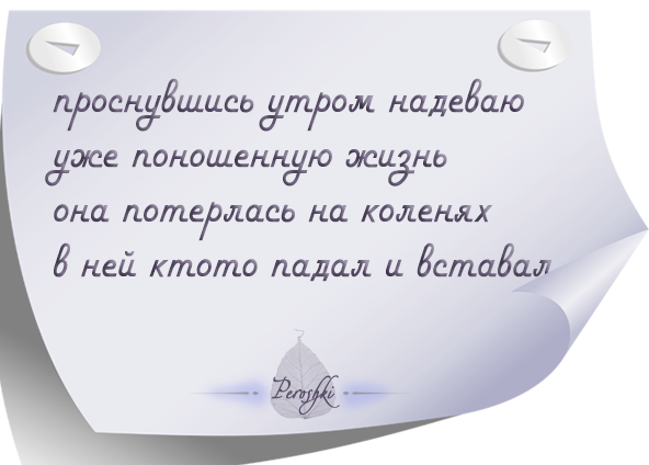 pirojki_017