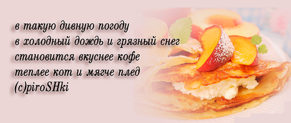 kot_blin_013 by Rimonel3