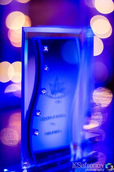 2015.11.22 Autumn Kaleidoscope 2015 (Award)-5 by ksafronov
