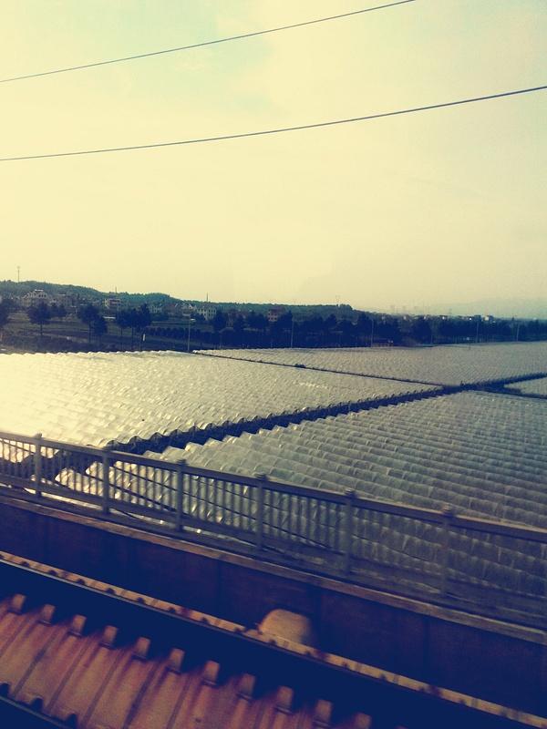Railway in China (4)
