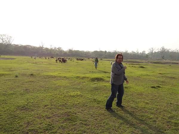 Chitwan Jungle Exploration
